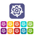 flower icons set flat vector image