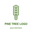 pine or fir tree logo vector image