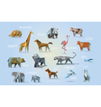 set of different animals polygonal icons low poly vector image