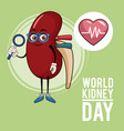 world kidney day cartoon vector image