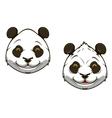Funny chinese panda bear mascot vector image vector image