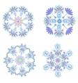 Set circular floral ornaments patterns vector image