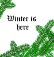 Winter text frame with pine tree branch vector image