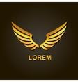 graphic golden wings element vector image vector image