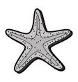 flat starfish cartoon vector image