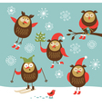 set of different owls character vector image vector image