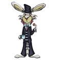 Fabulous Rabbit vector image