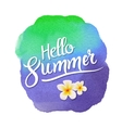 Hello summer lettering on watercolor blot vector image vector image