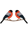 Bullfinch on branch vector image