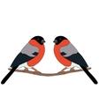Bullfinch on branch vector image