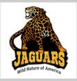 jaguar logo icon character vector image