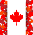 Maple Leaf background for celebrate the national vector image