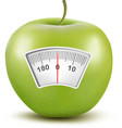Set of apples with a weight scale Diet concept vector image vector image