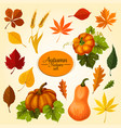 autumn vegetable and fallen leaf icon set design vector image