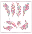 Set of decorative feathers vector image