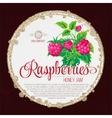 Raspberry Jam Label template design vector image