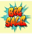 big sale sign vector image