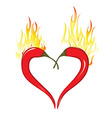 Fire heart of chili peppers Hot valentine love vector image