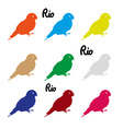 colors parrots icons symbol and Rio text eps10 vector image