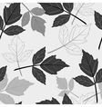 Gray seamless pattern with leaves vector image