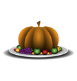 isolated pumpkin ilustration vector image