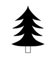 silhouette natural pine tree with trunk design vector image