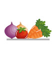 tray with vegetables icon vector image