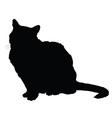 Cat Silhouette 2 vector image