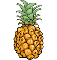 Pineapple fruit cartoon vector image