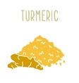 Turmeric powder and root vector image