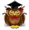 Wise owl vector image vector image