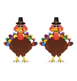 Two funny smiling turkey on Thanksgiving Day vector image