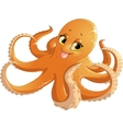beautiful orange octopus vector image