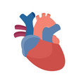 anatomical heart - flat graphic vector image