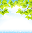Natural background with leaves vector image vector image