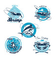 sea fishing trip and sporting club symbol set vector image vector image