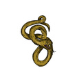 Viper Coiled Ready To Pounce Drawing vector image