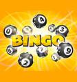 lotto balls around the word bingo vector image