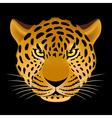 Leopard head vector image
