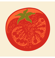 Abstract tomato drawing vector image