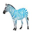 Zebra with strips of blue color vector image
