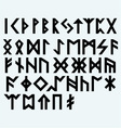 Runic script vector image vector image