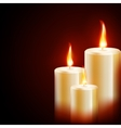 Candles on dark background EPS 10 vector image