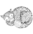 Hand drawn doodle outline cat sleeping vector image