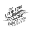 Only dead fish follow the stream vector image vector image