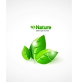 but i rarely do custom worksnature background vector image