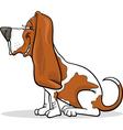 Basset hound dog cartoon vector image