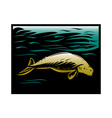 dugong manatee or sea cow vector image