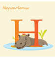 H for hippo vector image
