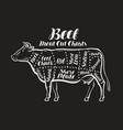 meat cut charts cow beef concept menu vector image